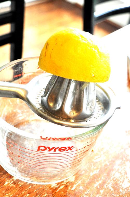 lemon shake ups12