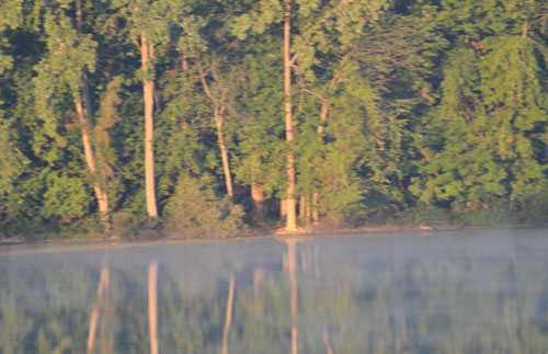 deer across lake008