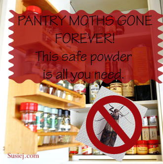 Susiej How I Finally Got Rid of Pantry Moths