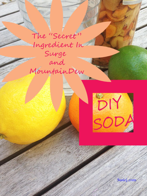 diy soda susiej002 copy
